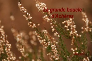2012-03-11 La Boucle d_Acheres