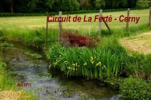 2013-05-26 La Ferte-Cerny