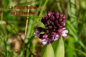 2014-04-18 La haute vallée de l_Essonne