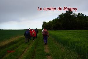 2014-05-11 Sentier de Moigny