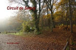 2014-11-23 Circuit de Satory