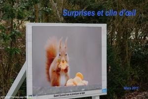Surprises et clin d'œil
