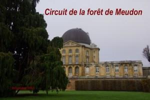 2015-11-08 Circuit de la forêt de Meudon