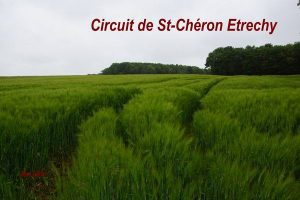 2016-05-20 Circuit Saint-Chéron - Etrechy