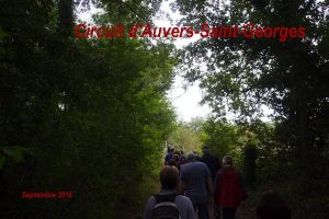 2016-09-11 Circuit d'Auvers-Saint-Georges