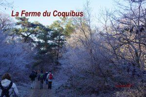 2017-01-06 La Ferme du Coquibus