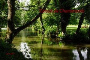 2017-06-25 Circuit de Chamarande