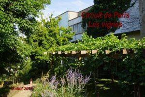2017-07-07 Circuit de Paris-Les vignes