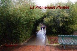 2017-12-10 La Promenade Plantée