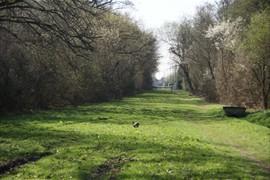 2012-03-27 les vaux de cernay 0055