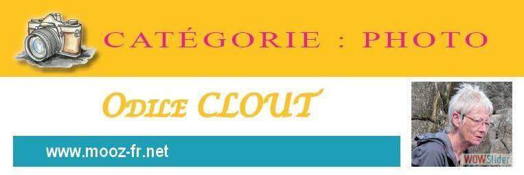 15-Odile Clout