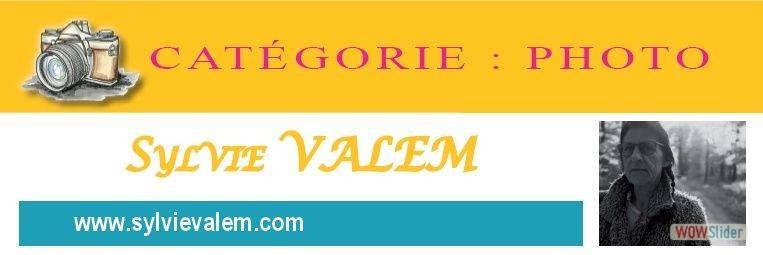 17-Sylvie Valem